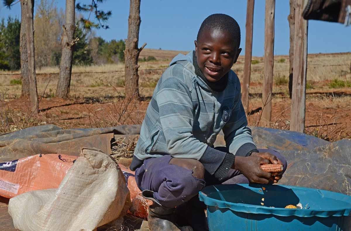 School Farms in Uganda